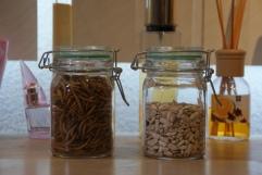 Meelwormen en zonnebloempitten zijn rijk aan vetten en suikers, en mag niet te veel worden gegeven.